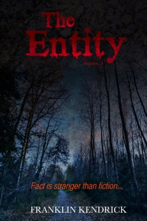 The Entity Volume 4 WEBSITE